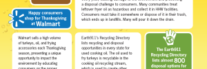 Earth911 Turkey Fryer Oil Information Sheet